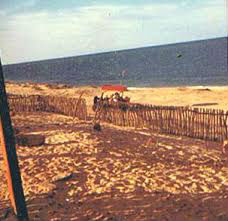 South of San Felipe, 1974, where we had a trailer for years